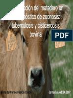 Inspeccion Del Matadero en Zoonosis Carmen Garcia Castro