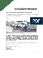 Produccion de Cana de Azucar Transformacion y Exportacion Como Panela Granulada Biologica Para El Mercado Solidario