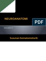NEUROANATOMI.pptx