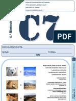 caderno de atividade - peixes, aves.pdf