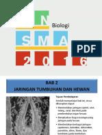 Bab 2 Jaringan Tumbuhan dan Hewan.pptx