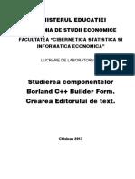Studierea Componentelor Borland c Builder Form