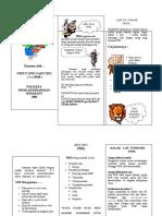 Leaflet CoPMS.doc