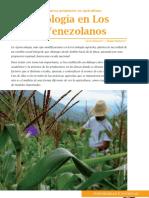 Agro e Colg i a Enos Andes Venezolano