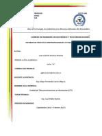 informe prácticas preprofesionales