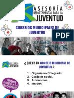 Presentación Consejos Municipales de Juventud---2010