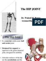 2013- Lower Limb-HIP Joint