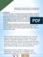 PRUEBAS QUIMICAS.pptx