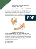 Las Contracciones Musculares
