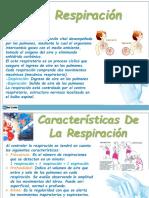 respiracion y presion arterial
