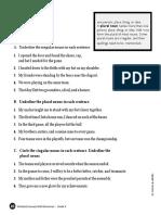 02 - Singular and Plural Nouns- PDF