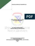 Articulo LA PONDERACION DE DERECHOS FUNDAMENTALES.pdf