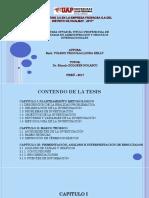 Modelo de Sustentacion (1) tesis