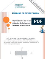 Fibonacci-tecnicas de Optimizacion