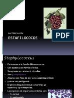 07. Estafilococos.pdf