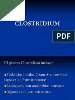 14 Clostridium