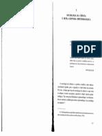 Capitulo 5 Boaventura.pdf