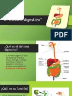 Power Point Sistema Digestivo