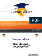 capacitacinblackboardcollaborate11julio2411-121018133640-phpapp02