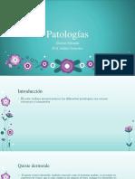 patologias final andres