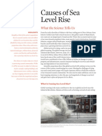 Causes of Sea Level Rise
