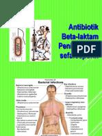 (2015) Penisilin Dan Sefalosporin) Edit