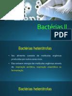 Bactérias respiração