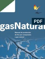 Gas Natural Manual de Produccion