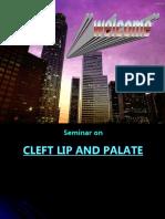 Cleft Lip Palate Pedo