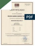 CERTIFICACION INSPECCION VISUAL Y TINTES.pdf