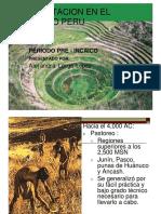 alimentos antiguo Perú