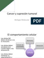 Cancer y Carcinogenesis (1) (1)