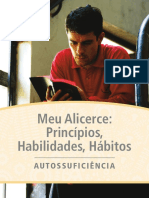 MEU ALICERCE.pdf