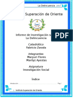 Informe de Investigacion Sobre La Delincuencia (2)