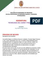 Tecnologia Del Cuero y Peleteria b