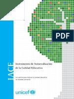IACE_unicef.pdf
