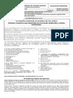 BIMESTRAL DOS CUARTO.docx
