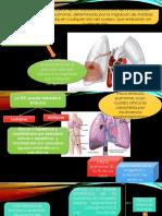Neumología Tromboembolia Pulmonar