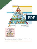 ciencia alimentacion