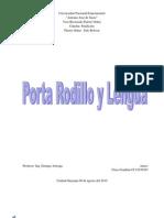 procedimiento y parametros de fundición de un porta rodillo y lengua
