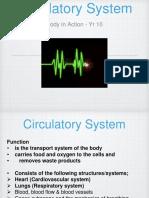circulatory system pp 2017