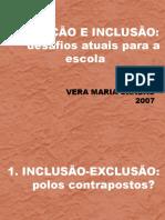 inclusão 2