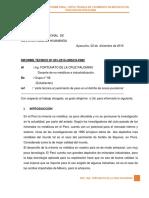 Informe Final No Metalicos1