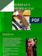 Heridas y Hemorragias - San Marcos