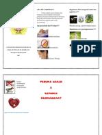 Vertigo Leaflet