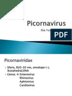 Picornavirus Edit