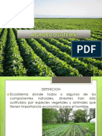 agroecosistema-130315113326-phpapp01.pptx