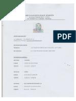 CV-AREVALO LIVIA RAUL MARTIN.pdf