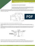 Clasificacin de las vocales.pdf