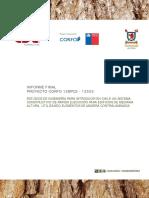 Informe Final 18-02-2015